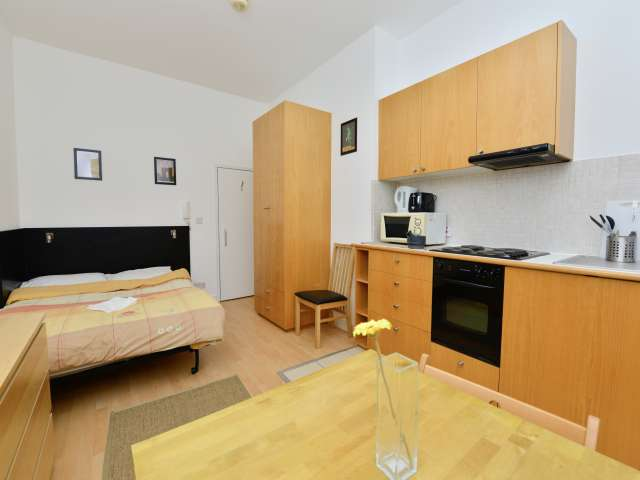 Sunny studio apartment to rent in Earl's Court, London