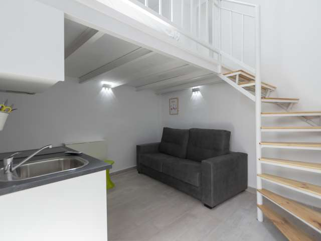 Tidy studio apartment for rent in Usera, Madrid