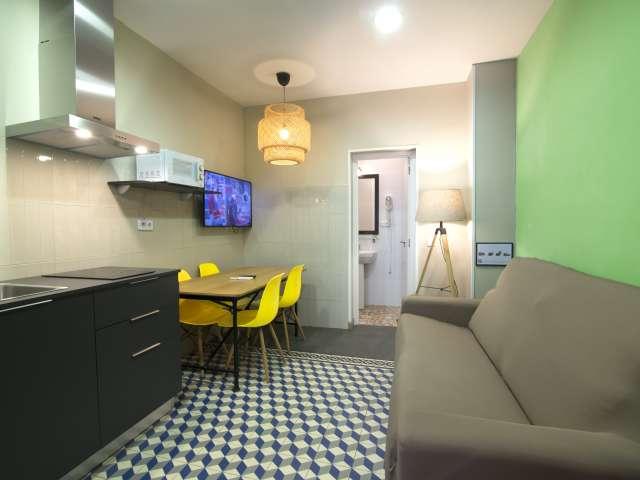 Studio for rent in Centro, Madrid