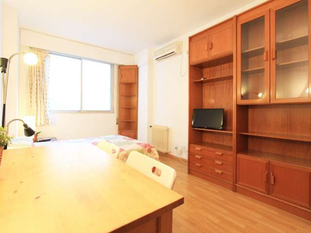 Cosy studio apartment for rent in Moncloa, Madrid