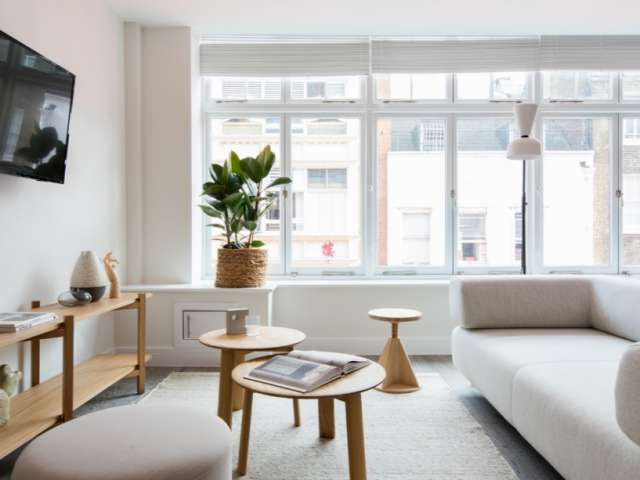 Appartement 1 Chambre à Louer à Covent Garden