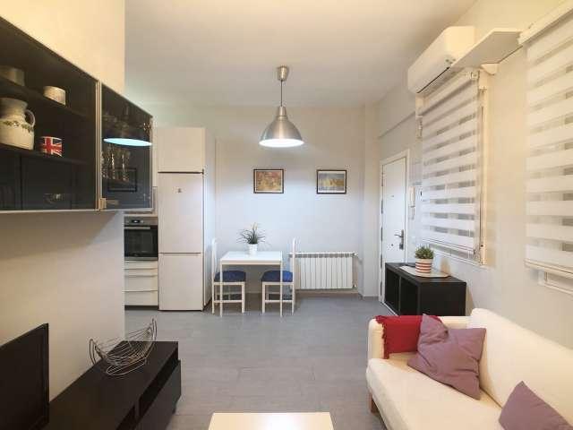 1-Zimmer-Wohnung zur Miete in Retiro in Madrid