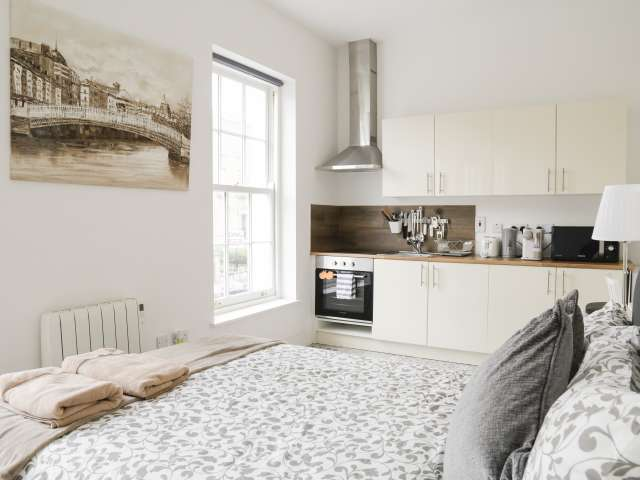 Modern studio flat to rent in Rathmines, Dublin
