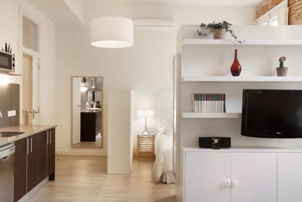 Living room - kitchen - bedroom
