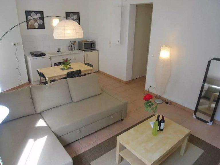 Monolocale in affitto nel 15 ° arrondissement di Parigi