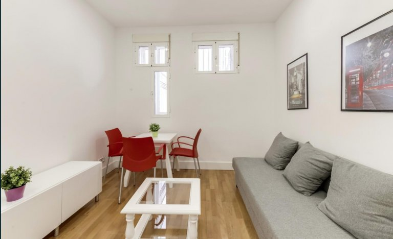 1-bedroom apartment for rent in Moncloa, Madrid