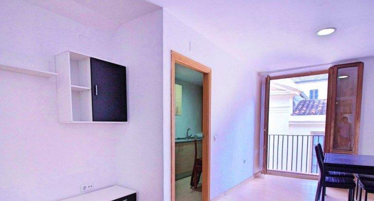 2-Zimmer-Wohnung zur Miete in El Carmen, Valencia