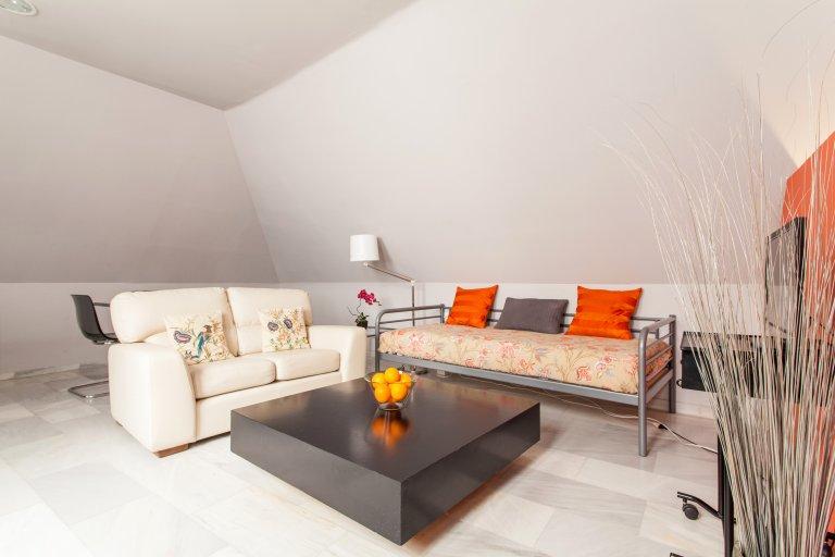 Studio apartment for rent in Santa Cruz
