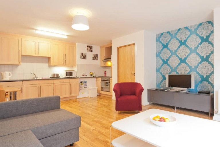 1-bedroom apartment for rent in the Old City, Dublin