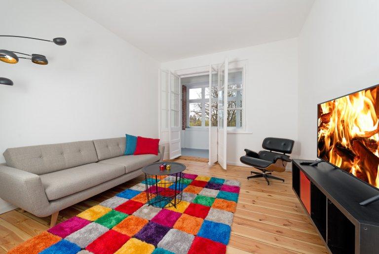 Appartamento Perky con 1 camera da letto in affitto a Mitte, Berlino