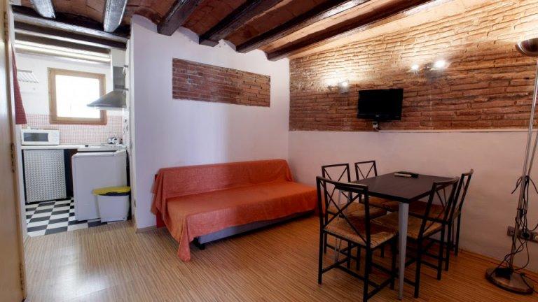 Przytulne 2-pokojowe mieszkanie do wynajęcia w Barri Gòtic, Barcelona