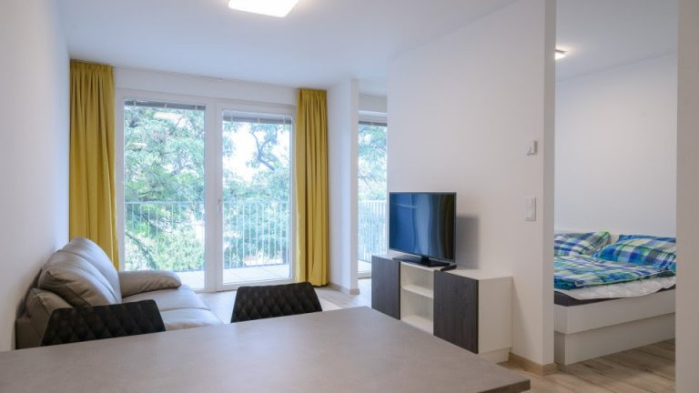 1-bedroom apartment for rent next to the Danube, Vienna