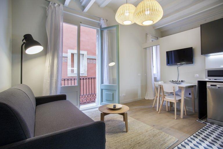 1-bedroom apartment for rent in Barcelona's Barri Gòtic