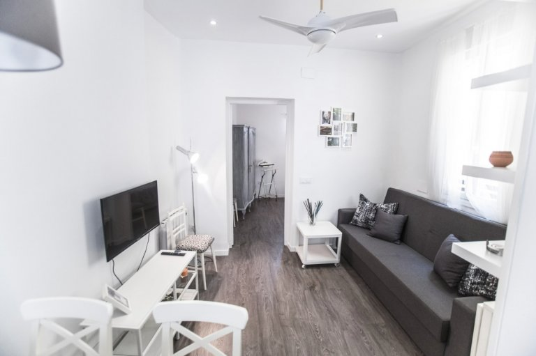 1-bedroom apartment for rent in Lavapiés, Madrid