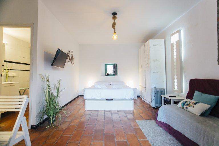 Studio apartment for rent in Seville Centro