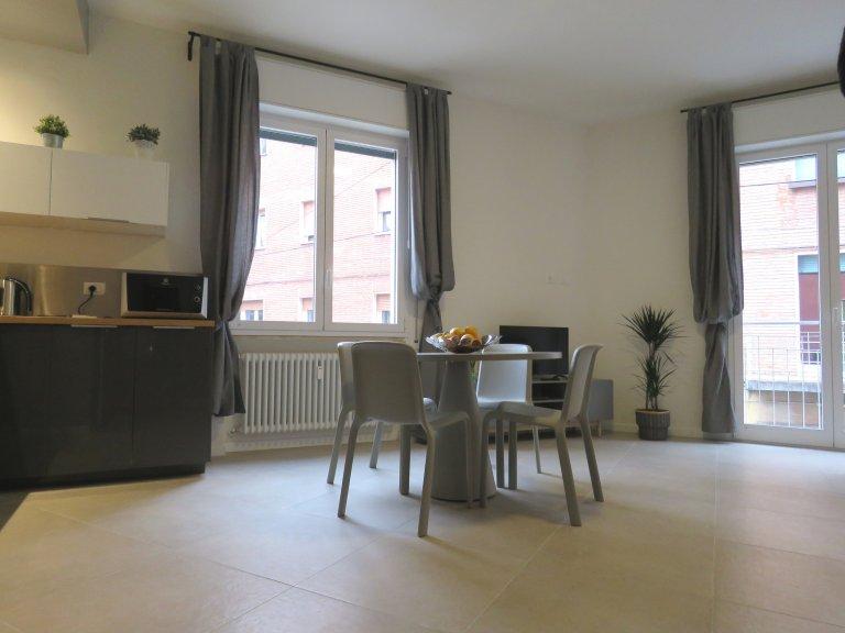 1-Zimmer-Wohnung zur Miete in San Felice, Bologna