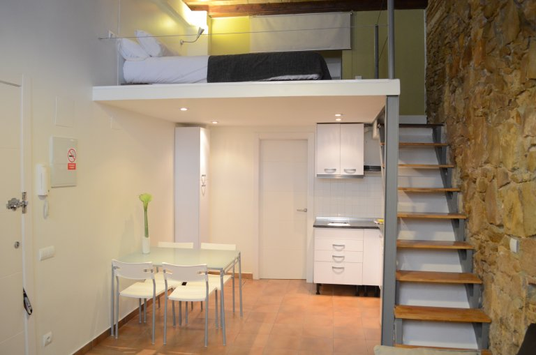 Beautiful studio apartment for rent in Poble-sec, Barcelona