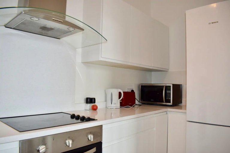 Całe mieszkanie z 3 sypialniami w Dublinie 1