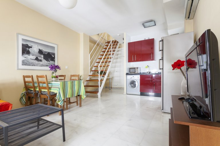 1-bedroom apartment for rent in Triana