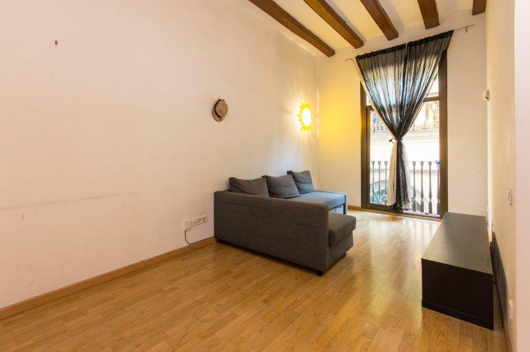 Simple 1-bedroom apartment for rent in Barri Gòtic