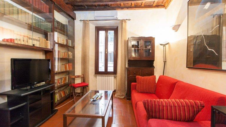 Attrayant appartement 1 chambre à louer à Trastevere