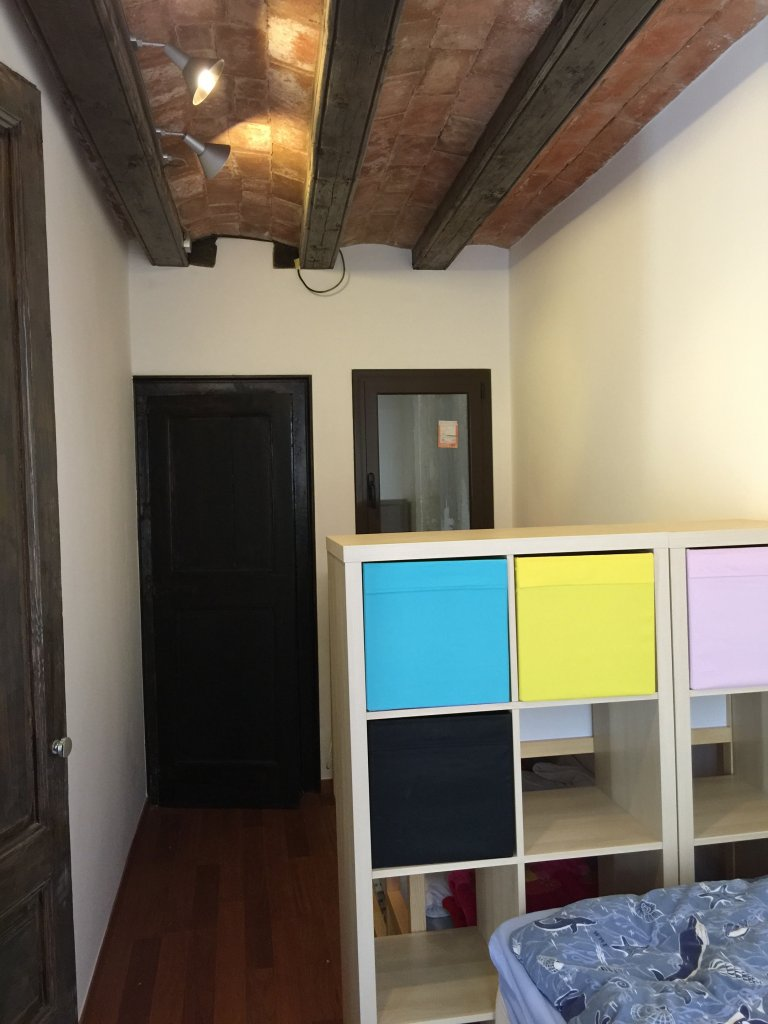Whole 3 bedrooms apartment in Barcelona