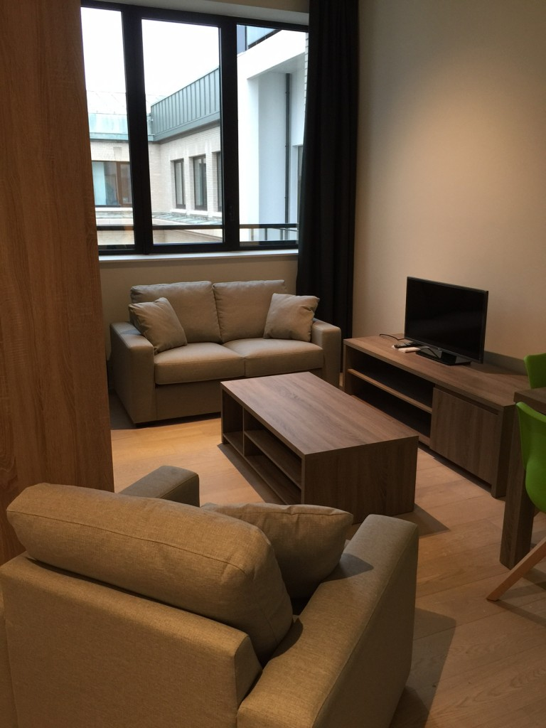 Ideal apartment for rent in Brussels City Centre, Brussels