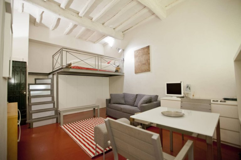 Przestronny apartament typu studio do wynajęcia w Centro Storico w Rzymie