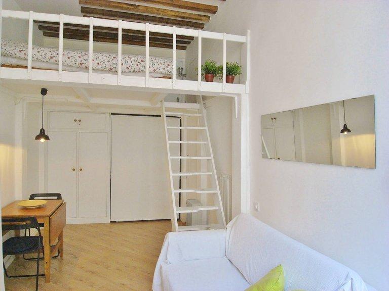 Studio apartment for rent in the 4th arrondissement