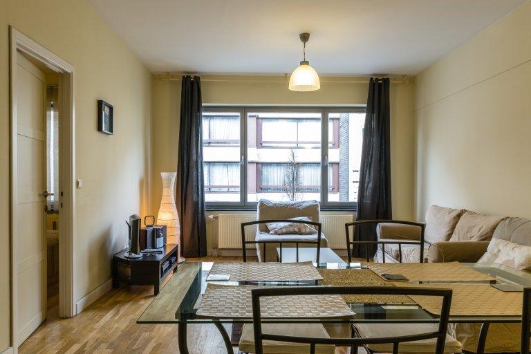 Nizza Appartamento in affitto a Ixelles