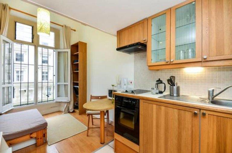 Uroczy apartament typu studio do wynajęcia w Pimlico, Londyn