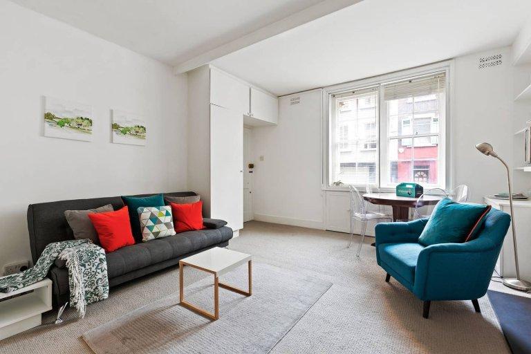 Appartement de 1 chambre à louer à Notting Hill, Londres