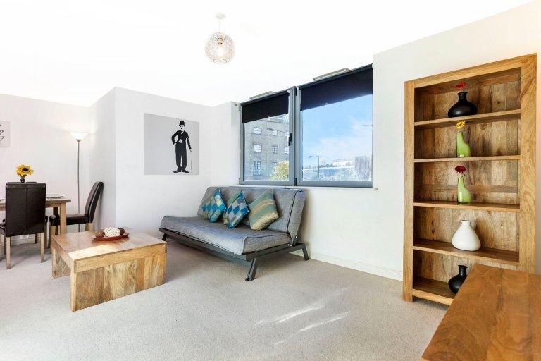 2-pokojowe mieszkanie do wynajęcia w Camden w Londynie