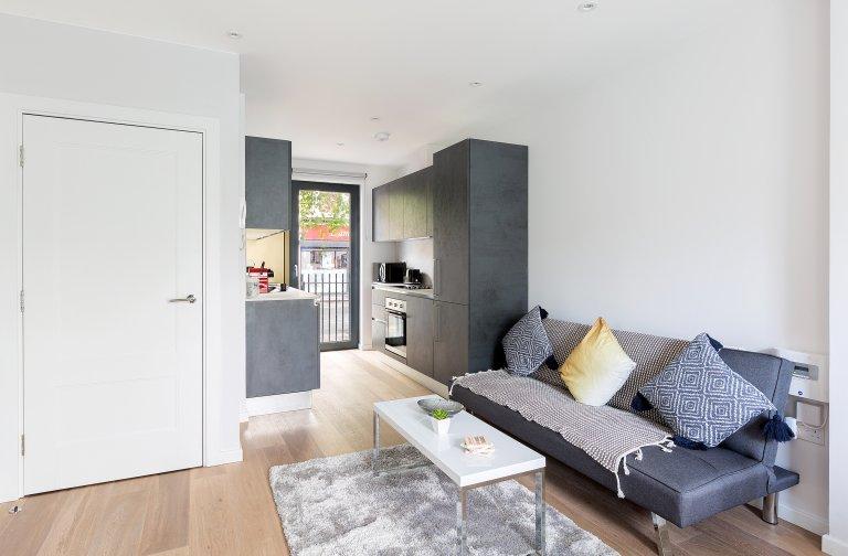 Tolle 2-Zimmer-Wohnung zum Mieten in Camden Town, London