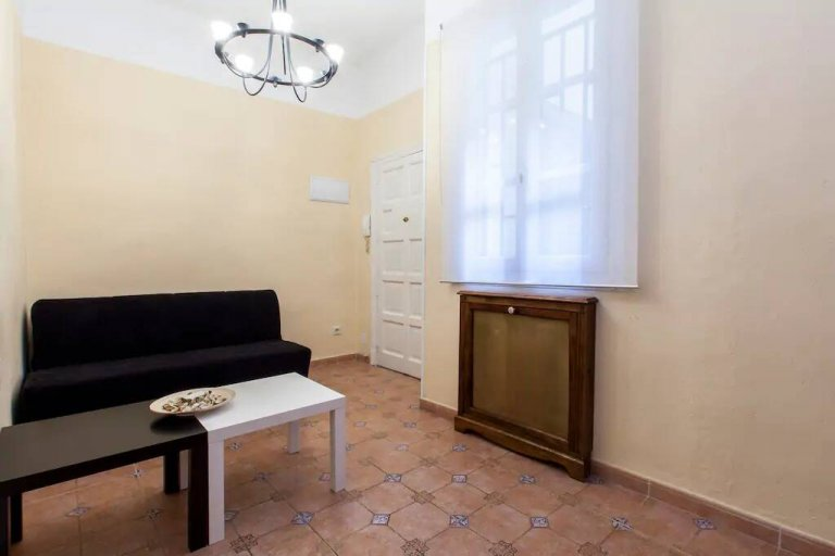 2-bedroom apartment for rent in Malasaña, Madrid