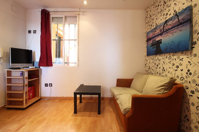 Lovely 1-bedroom apartment for rent in Lavapiés, Madrid