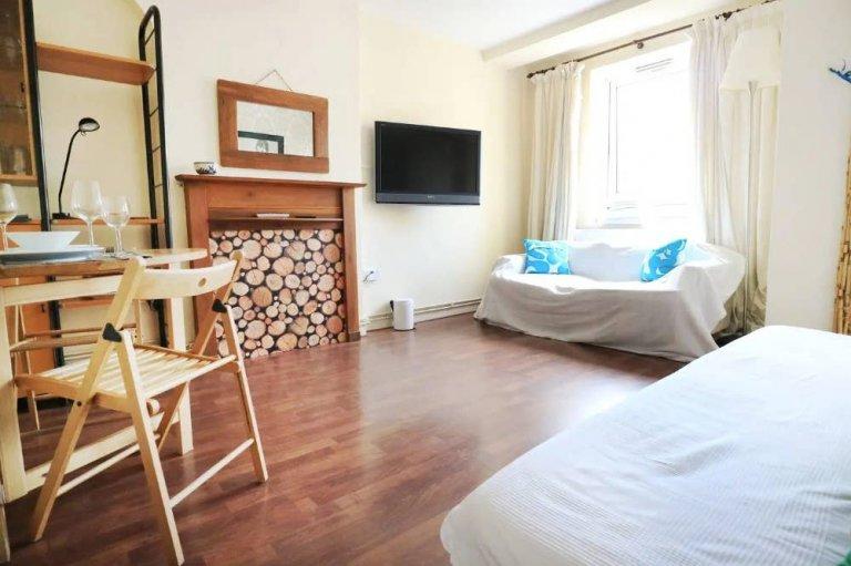 Mieszkanie z 3 sypialniami do wynajęcia w Shoreditch w Londynie