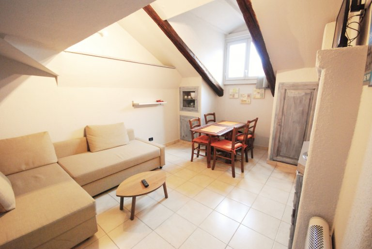1-bedroom apartment for rent in San Salvario, Turin