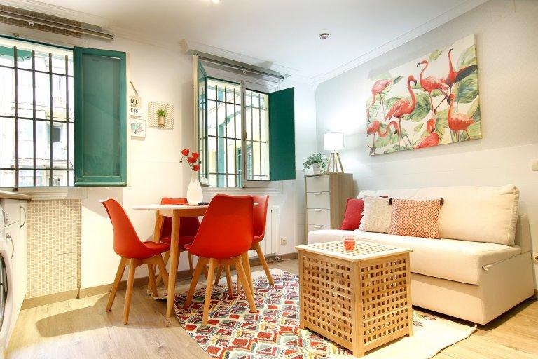 Jasne mieszkanie 1-pokojowe do wynajęcia w La Latina, Madryt.