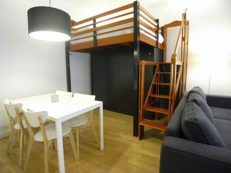 Nice studio for rent in 15th arrondissement, Paris