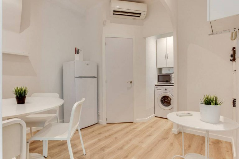 Sunny 1-bedroom apartment for rent in El Born, Barcelona