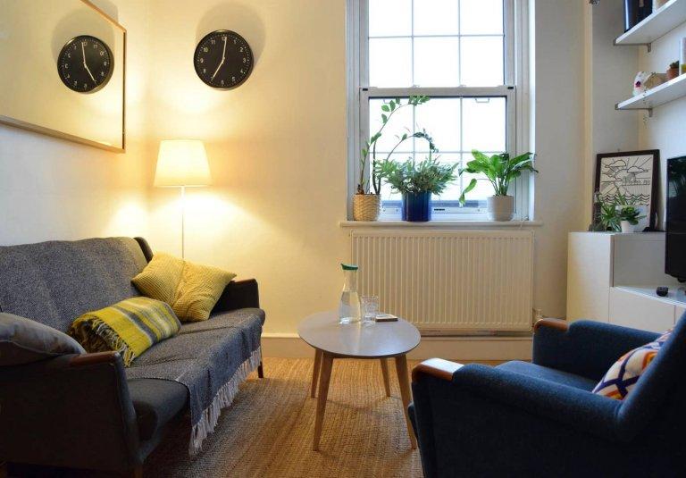 Mieszkanie z 1 sypialnią do wynajęcia w Camberwell w Londynie