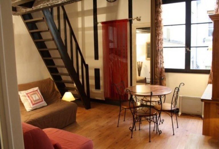 Studio apartment for rent in Paris' 4th arrondissement