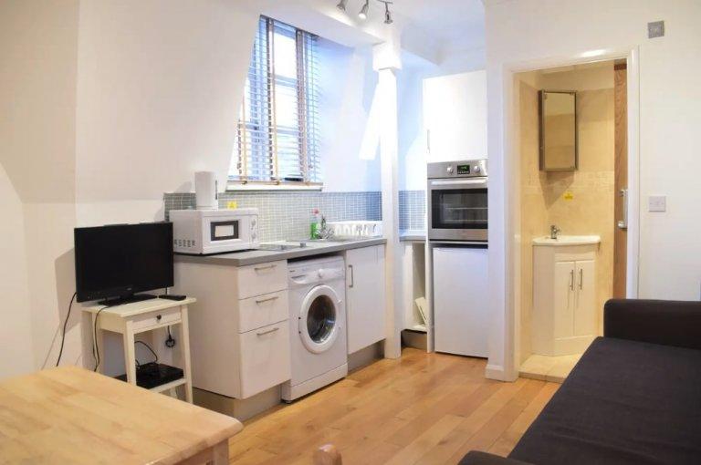 Przytulne mieszkanie z 1 sypialnią do wynajęcia w City of Westminster, Londyn