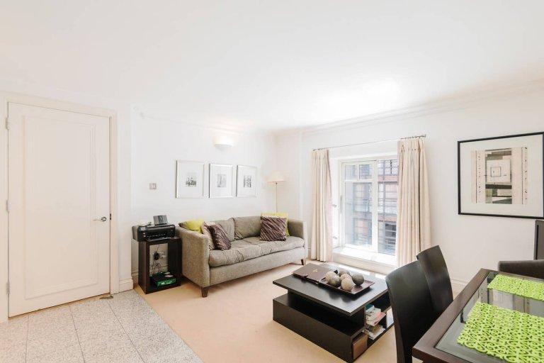 Appartement lumineux appartement 1 chambre à louer à Westminster