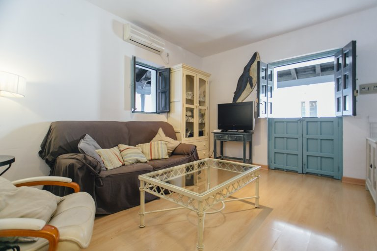 1-bedroom apartment for rent in Seville Centro