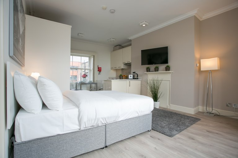 Modern Studio Apartment For Rent In Downtown Dublin