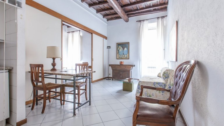 Bright 1-bedroom apartment for rent - Centro Storico, Rome