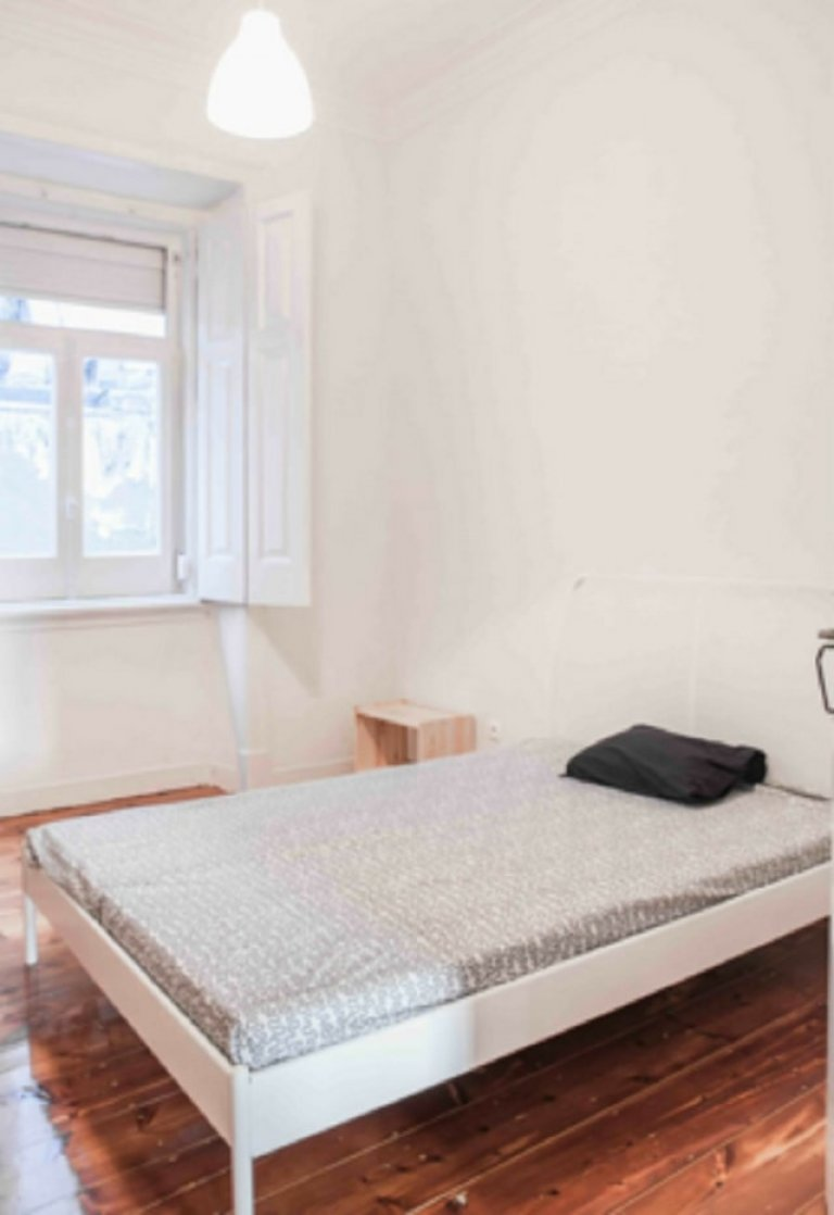 Comfy room for rent in 9-bedroom apartment in Penha França
