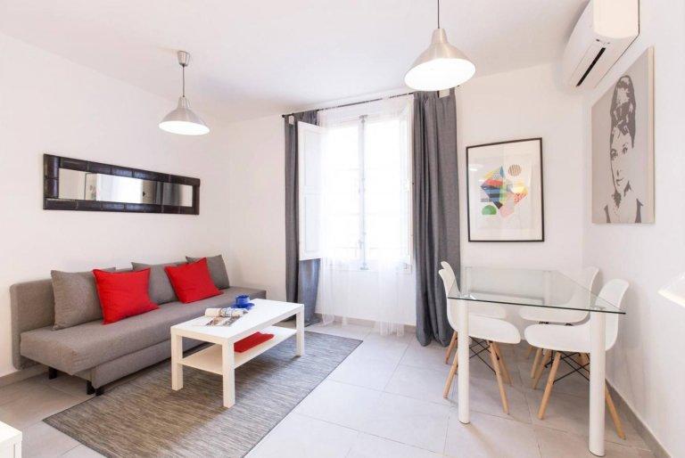 Bright studio apartment for rent in Extramurs, Valencia